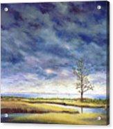 Sunlight On The Marshes 18x24 Acrylic Print