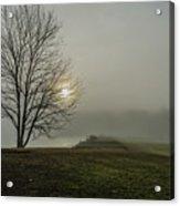 Sunlight Serenade Acrylic Print