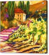 Sunlit Grapevines  Sold Acrylic Print