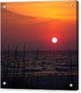 Sunlit Night Acrylic Print