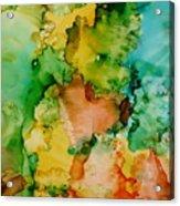Sunlit Reef Acrylic Print