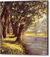 Sunlit Riverbank Acrylic Print
