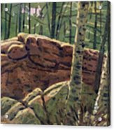 Sunlit Rocks Acrylic Print