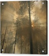 Sunlit Smoke Whispers The Firefighters Acrylic Print