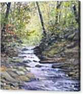 Sunlit Stream Acrylic Print