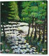 Sunlit Waterfall Acrylic Print
