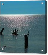 Sunlit Waters Acrylic Print