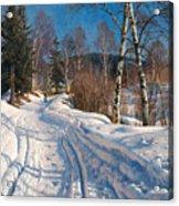 Sunlit Winter Landscape Acrylic Print