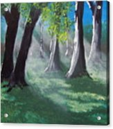 Sunlit Woods Acrylic Print