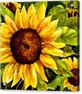 Sunny Floral Acrylic Print