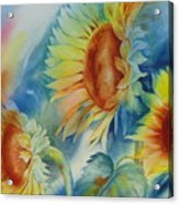 Sunny Flowers I Acrylic Print