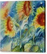 Sunny Flowers Acrylic Print