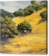 Sunny Hills Acrylic Print