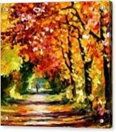Sunny Path Acrylic Print