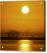 Sunny Skies Acrylic Print