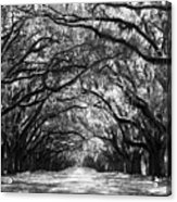 Sunny Southern Day - Black And White Acrylic Print