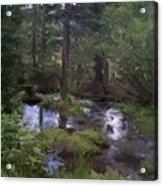 Sunny Woods Acrylic Print