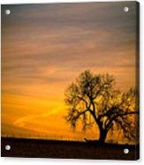 Sunrise 1-27-2011 Acrylic Print