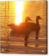 Sunrise 10 5 2009 008a Acrylic Print