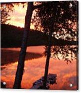 Sunrise And Birch Trees Acrylic Print