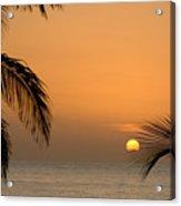 Sunrise And Palms Acrylic Print
