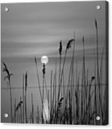 Sunrise Black And White  Acrylic Print
