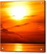 Sunrise Flying Two Acrylic Print