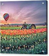 Sunrise, Hot Air Balloon And Moon Over The Tulip Field Acrylic Print