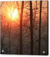 Sunrise In A Foggy Wood Acrylic Print
