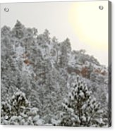Sunrise In Snowstorm In The Pike National Forest Acrylic Print