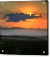 Sunrise In The Swamp-3 Acrylic Print