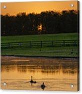 Sunrise On A Gettysburg Duck Pond Acrylic Print