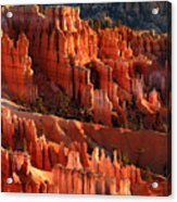 Sunrise On The Hoodoos Of Bryce Canyon National Park Acrylic Print