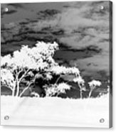 Sunrise Over Fort Salonga B W In Negative Acrylic Print