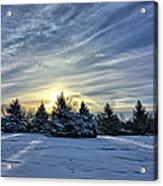 Sunrise Pines Acrylic Print