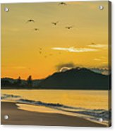 Sunrise Seascape With Mountain And Birds Acrylic Print