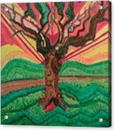 Sunrise Treeair Acrylic Print