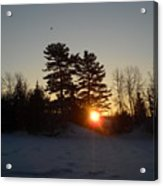 Sunrise Under Pine Tree Acrylic Print