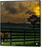 Sunrise With Horses Acrylic Print