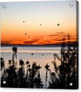 Sunrise1 Acrylic Print