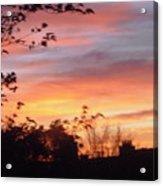 Sunset 31 Acrylic Print