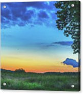 Sunset And Flowers Acrylic Print