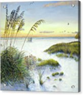 Sunset And Sea Oats At Siesta Key Public Beach Acrylic Print