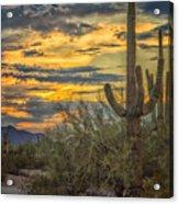 Sunset Approaches - Arizona Sonoran Desert Acrylic Print