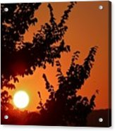 Sunset At Budapest Acrylic Print