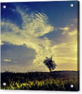 Sunset At Kuru Kuru Acrylic Print