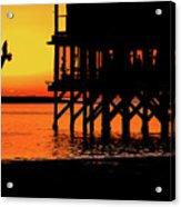 Sunset At Raft With Bird Acrylic Print