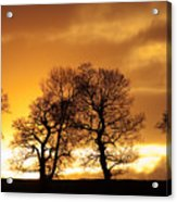 Sunset At Redhill Acrylic Print