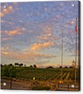 Sunset At Vineyard Acrylic Print