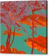 Sunset Beach At Night Acrylic Print